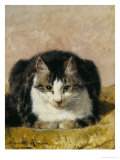 Pampered Pet Giclee Print by Henriette Ronner Knip