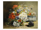 Still Life of Cornflowers, Poppies and Violets Giclee Print by Eugene Henri Cauchois