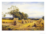 Worcestershire Cornfield Giclee Print by Benjamin Williams Leader