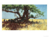Zebras in the Steppe Giclee Print by Wilhelm Kuhnert