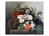 Still Life with Squirrel Giclee Print by Mary Kearse