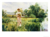 Picking Wild Flowers Giclee Print by Alfred Augustus Glendenning