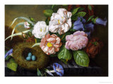 Still Life of Camelias Giclee Print by Woodleigh Marx Hubbard