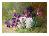 Clematis and Honeysuckle Giclee Print by Albert Tibulle de Furcy Lavault