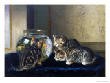 Three Kittens Watching Goldfish Giclee Print by Horatio Henry Couldery