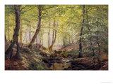 Forest Glade, Springtime Giclee Print by Johannes Boesen