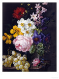 Still Life of Roses, Hyacinths and Grapes Giclee Print by Josef Lauer