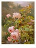 Roses roses Reproduction procédé giclée par Alexandre Debrus