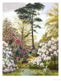 Pretty Woodland Garden Giclee Print by Marian Chase