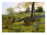 Near Dorking, Surrey Reproduction proc&#233;d&#233; gicl&#233;e par Charles Collins