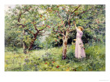 In the Orchard Giclee Print by Walter Boodle