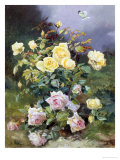 Pink and Yellow Roses Giclee Print by Alexandre Debrus