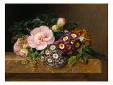 Bouquet of Pink Camellias and Primula on Marble Ledge Reproduction procédé giclée par Johan Laurentz Jensen