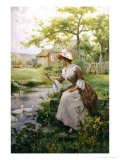 Feeding the Ducks Giclee Print by Alfred Augustus Glendenning