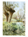 Willows on the Calm Giclee Print by Charles Butler