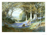 Wild Hyacinths Giclee Print by Charles Gregory