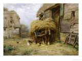In the Farmyard Giclee Print by William Blacklock