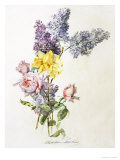 Study of Lilac and Roses Giclee Print by Madeleine Lemaire
