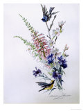 Study of Heather Cornflower and Blossom Giclee Print by Madeleine Lemaire