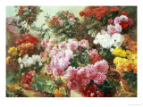 Colorful Chrysanthemums Giclee Print by Henry Bonnefoy