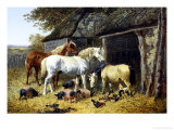 Farmyard Friends Giclee Print by John Frederick Herring II