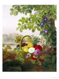 Dahlias, Asters and Morning Glory Reproduction procédé giclée par Johan Laurentz Jensen