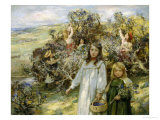 Picking Blackberries Giclee Print by William Mcgeorge