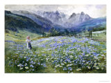 Alpin Meadow Giclée-Druck von John MacWhirter