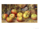Still Life of Apples Giclee Print by Frederick Spencer