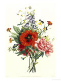 Bouquet of Foxglove, Poppy and Peonie Giclee Print by Jean Louis Prevost