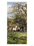 Spring in the Orchard Giclee Print by Alfred Parsons