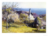 Springtime, Devon Reproduction proc&#233;d&#233; gicl&#233;e par John White