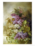 Study of Lilac Giclee Print by Claude Massman