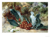 Christmas Holly Giclee Print by Jabez Bligh
