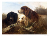 Good Friends Giclee Print by Henri Schouten