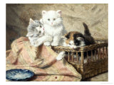 Playmates Giclee Print by Henriette Ronner-Knip