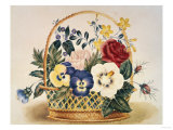 Pansies in a Basket Giclee Print