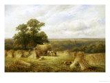 Cornfield Giclee Print by George Turner