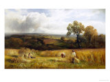 Golden Harvest Giclee Print by George Turner