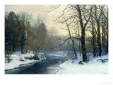 The Woods in Silver and Gold Giclee Print by Anders Andersen-Lundby