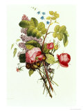 Bouquet of Rose, Lilac and Auricula Giclée-Druck von Jean Louis Prevost