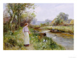 Feeding the Ducks Giclee Print by Ernest Walbourn