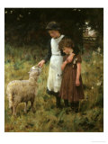 Feeding the Sheep Giclee Print by George S. Knowles