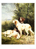 Three Irish Setters Giclee Print by Charles Oliver De Penne