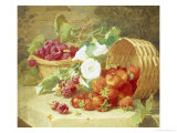 Baskets of Strawberries, Raspberries and Convolvulus Giclee Print by Eloise Harriet Stannard