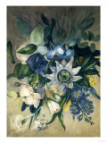 Study of Convulvulus, Passion Flower and Rose, c.1840 Giclee Print