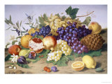 Still Life of Grapes, Pineapple, Figs and Pomegranates Lámina giclée por Adolf Senff