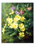 Spring Flowers Giclée-Druck von Annie Feray Mutrie