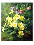 Spring Flowers Giclee Print by Annie Feray Mutrie