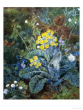 Still Life of Polyanthus and Butterfly Giclee Print by Mary Margetts